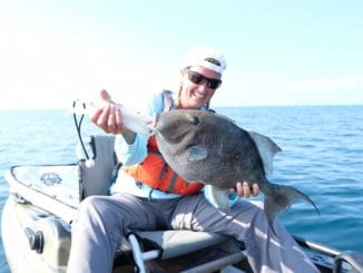 Monthly Fishing Reports